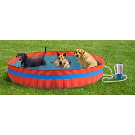 Piscinetta per cani My Dog Pool 305 PRO